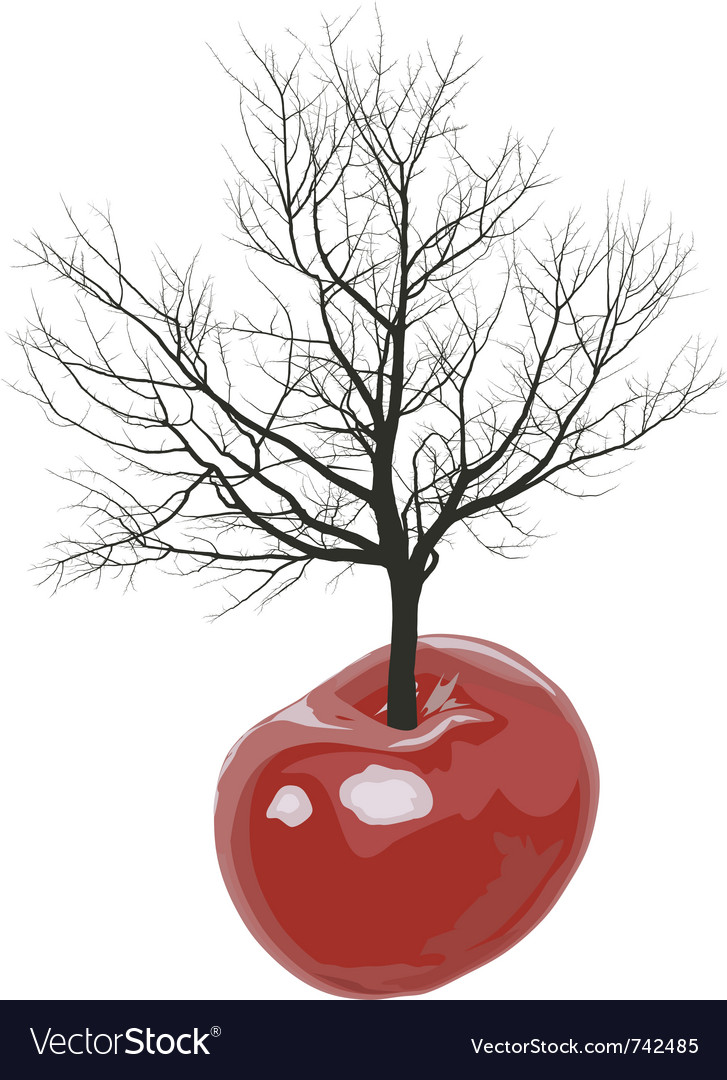 Cherry tree of cherries vector | Price: 1 Credit (USD $1)