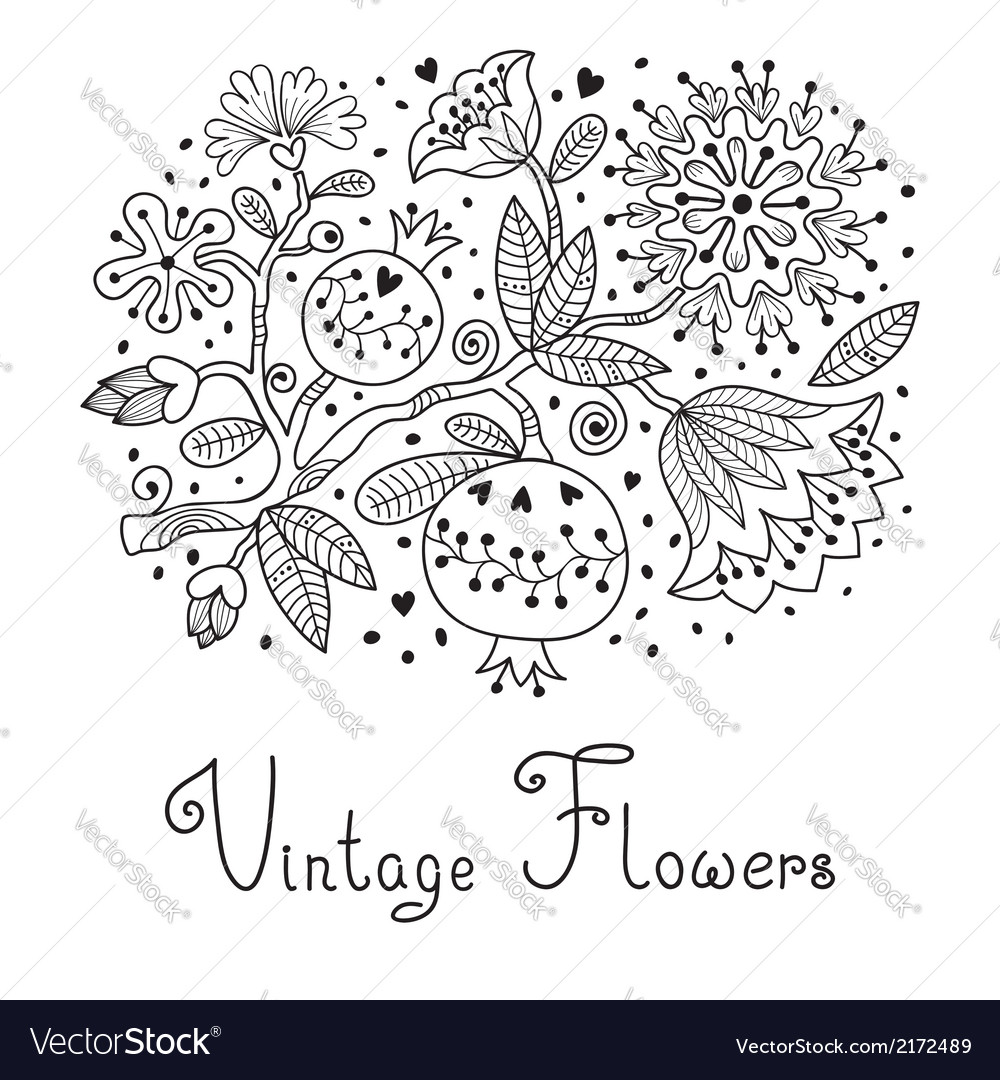 Flowers and pomegranate vector | Price: 1 Credit (USD $1)