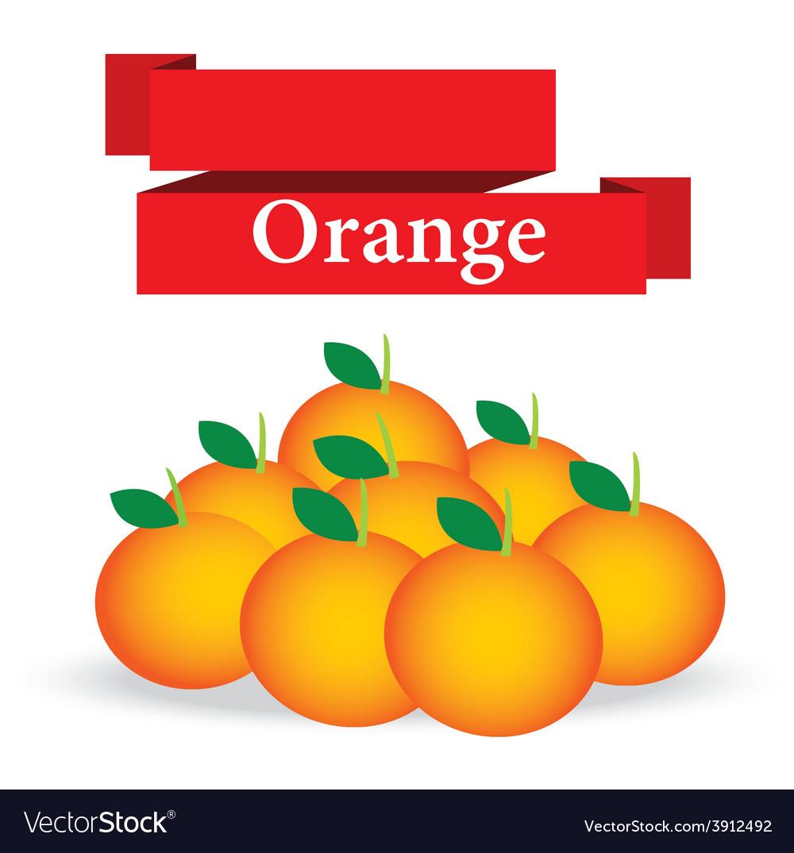 Fresh orange on white background vector | Price: 1 Credit (USD $1)