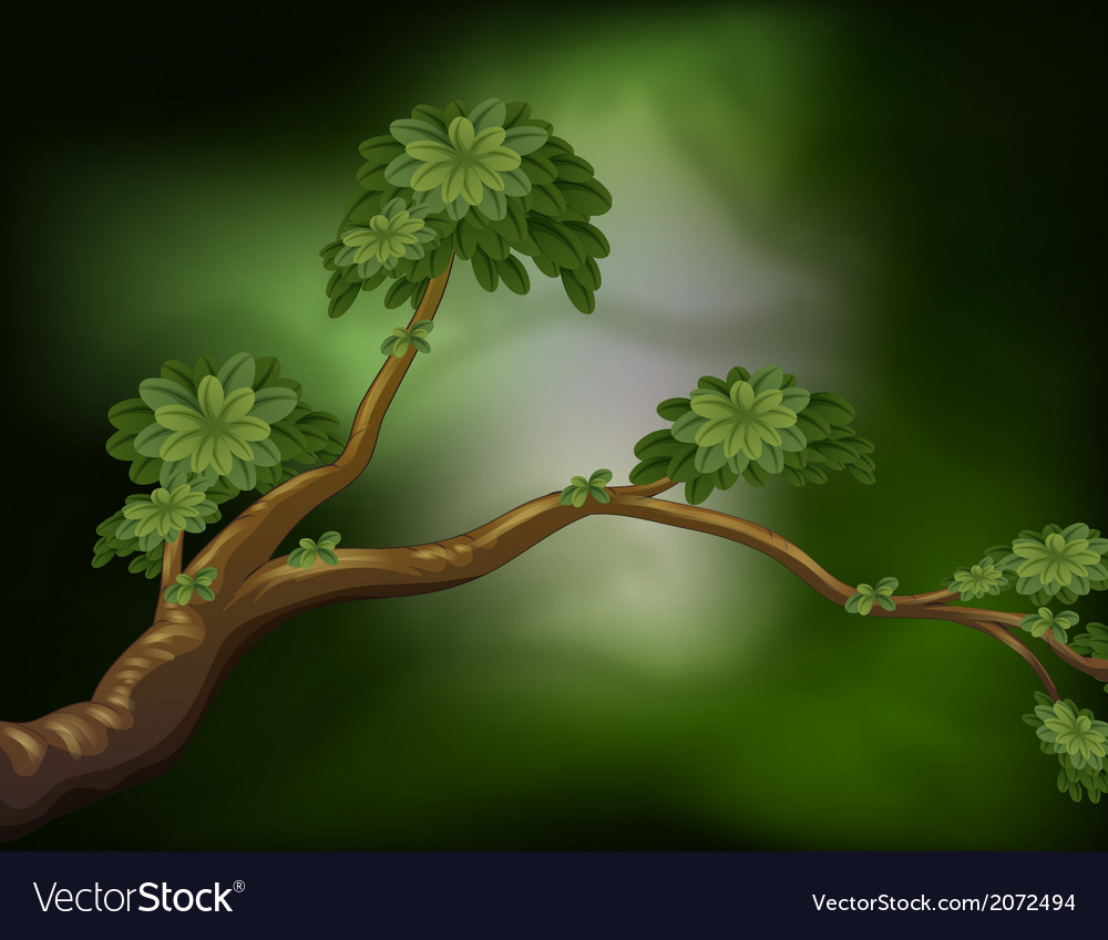 A branch of a tree vector | Price: 1 Credit (USD $1)