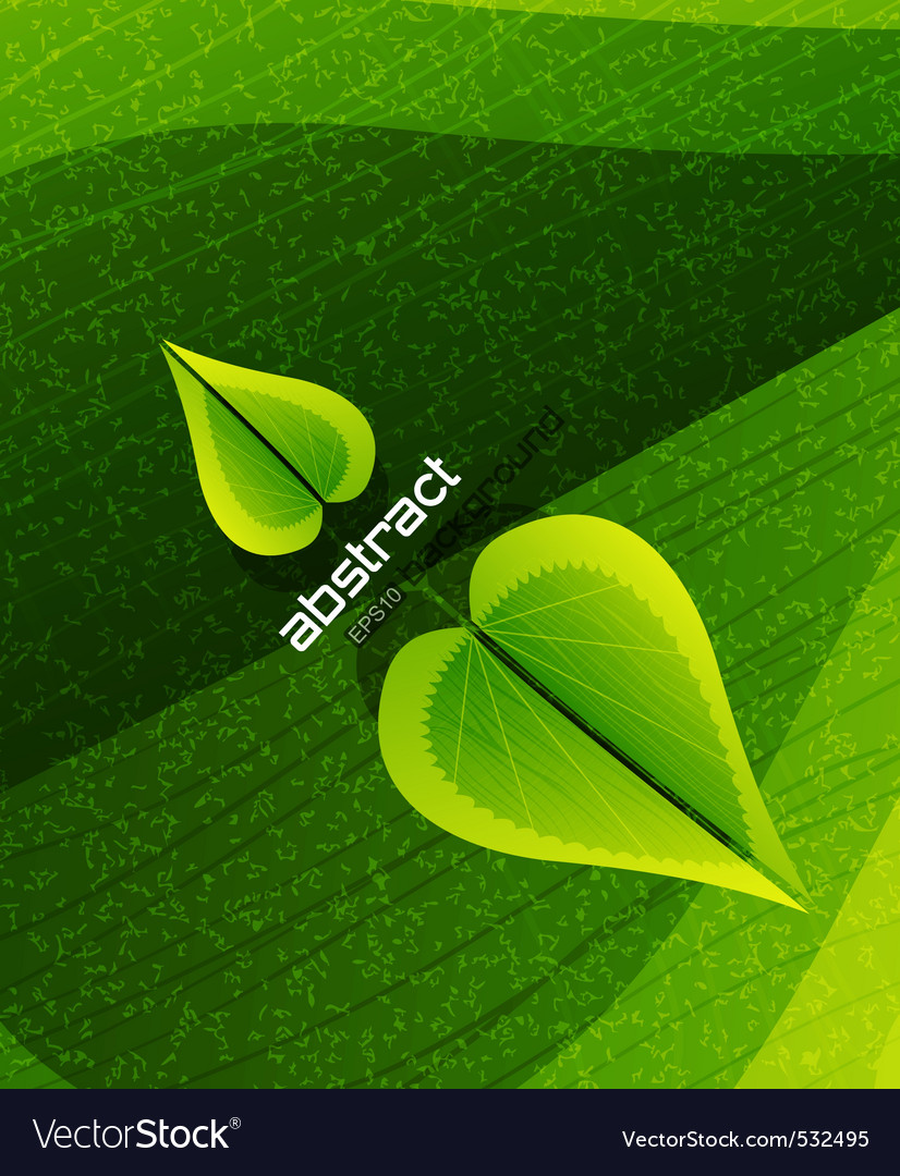 Evergreen nature vector   Price: 1 Credit (USD $1)