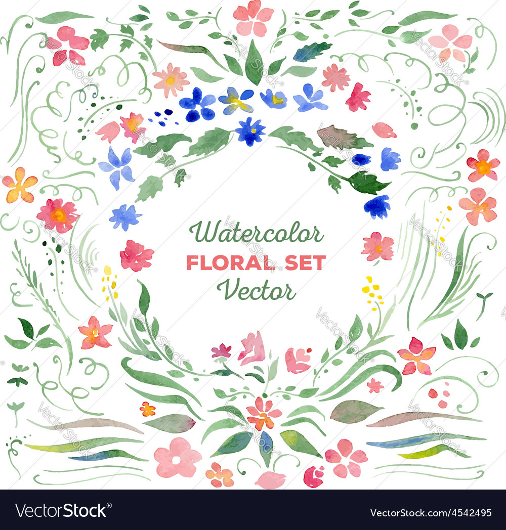 Floral set - watercolor vector