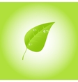 Green leaf with drops of dew eps 10 vector