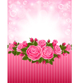 Roses backdrop vector