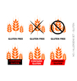 Orange gluten free signs isolated on white vector