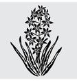 Decorative hyacinth vector