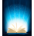 Opened magic book with magic light vector