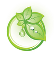 Ecological badge with leaves in circles vector