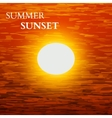 Summer sunset background vector