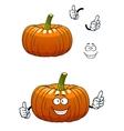 Funny pumpkin vegetable cartoon character vector