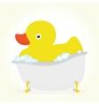 Rubber duck in a bath vector