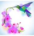 Rainbow humming-bird with violet orchids vector