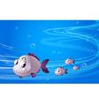 Four piranhas under the sea vector