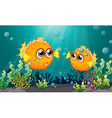 Two puffer fishes under the sea vector