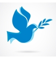 Dove with the olive bench vector