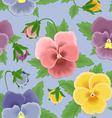 Seamless pansies pattern vector