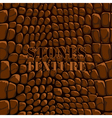 Stones texture brown vector
