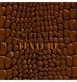 Stones texture brown vector