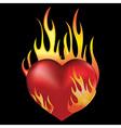 Heart black vector