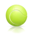 Tennis-ball vector