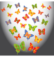 Butterflies in light vector