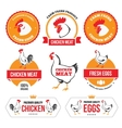 Chicken meat and eggs 2 vector
