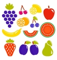 Set isolated fruit icons vector
