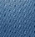 Jeans texture vector