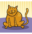 Yellow cat sitting on the floor vector
