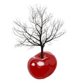 Cherry tree of cherries vector