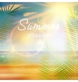 Summer calligraphic design template vector