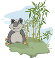 Panda and bamboo wood vector