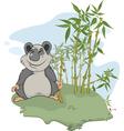 Panda and bamboo wood vector