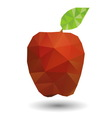 Red apple in geometric origami style vector