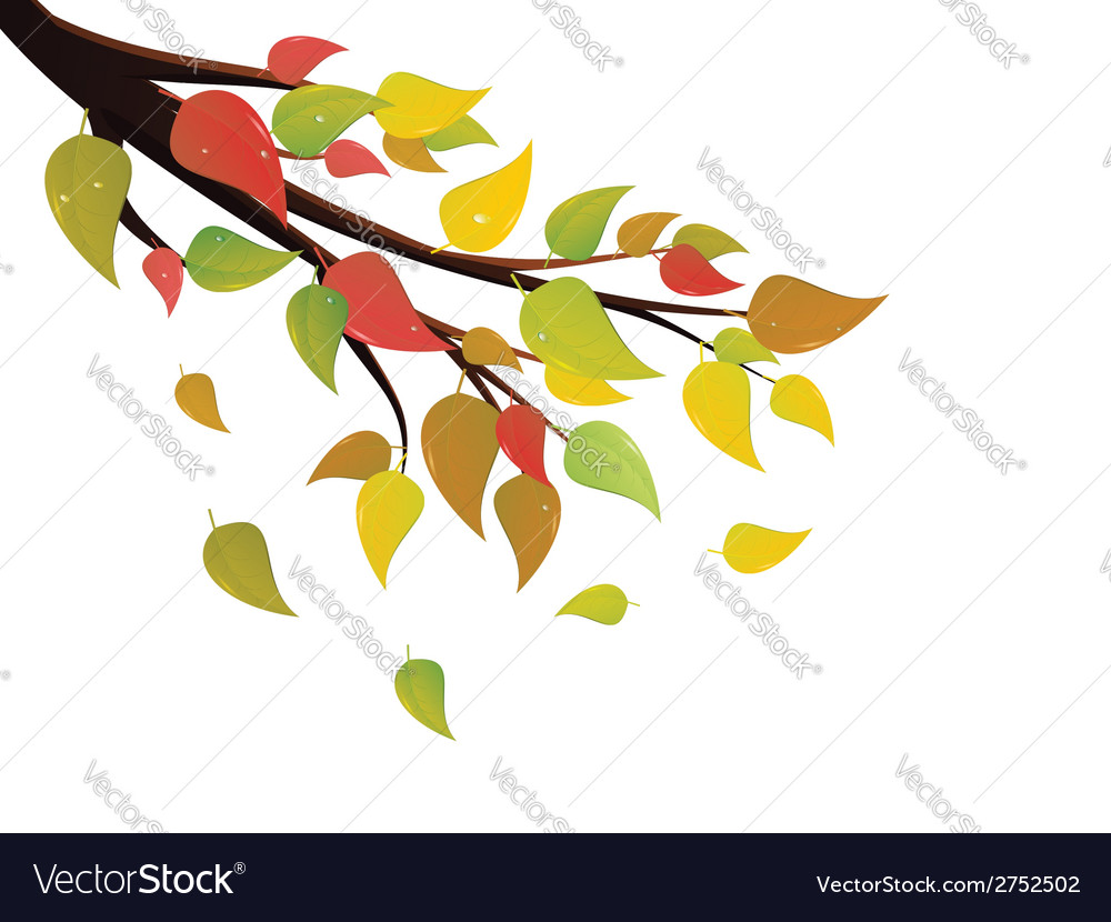 Fall leaves on branch vector | Price: 1 Credit (USD $1)