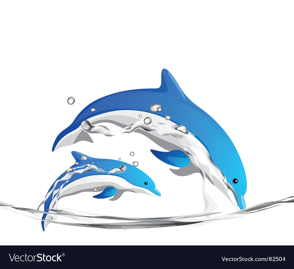 Dolphins vector | Price: 1 Credit (USD $1)