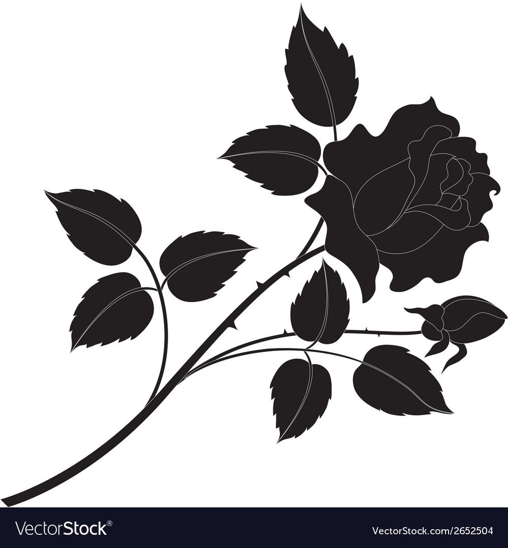 Rose flower silhouettes vector | Price: 1 Credit (USD $1)
