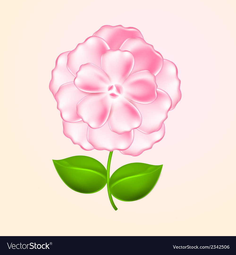 Beautiful pink flower vector | Price: 1 Credit (USD $1)