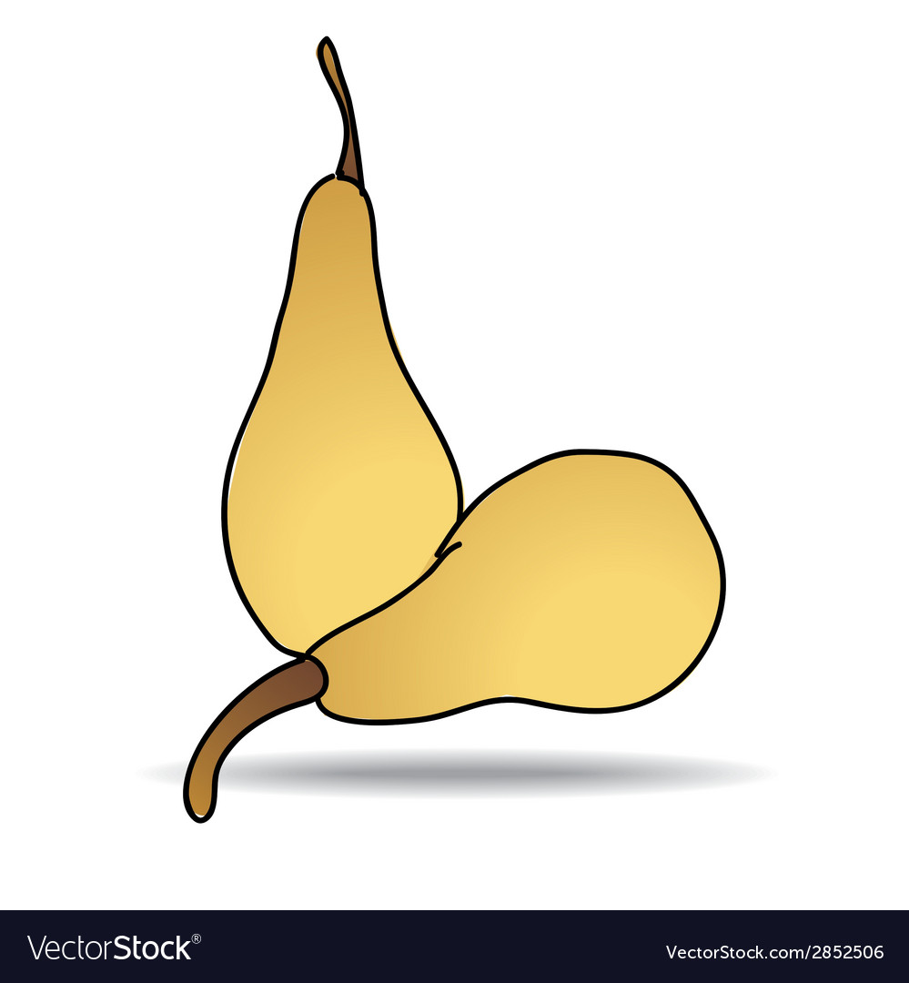 Freehand drawing pear icon vector | Price: 1 Credit (USD $1)