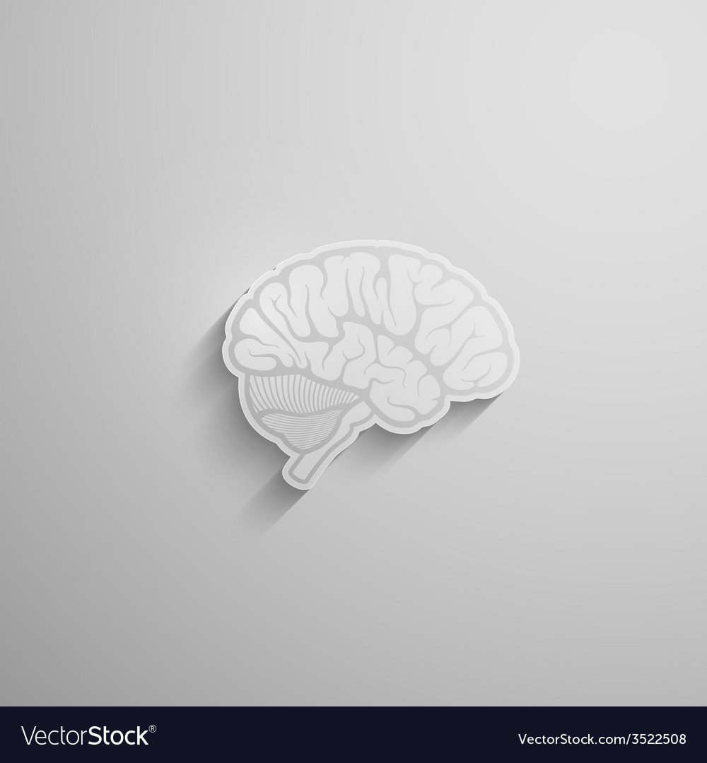A paper 3d human brain with long shadow vector | Price: 1 Credit (USD $1)