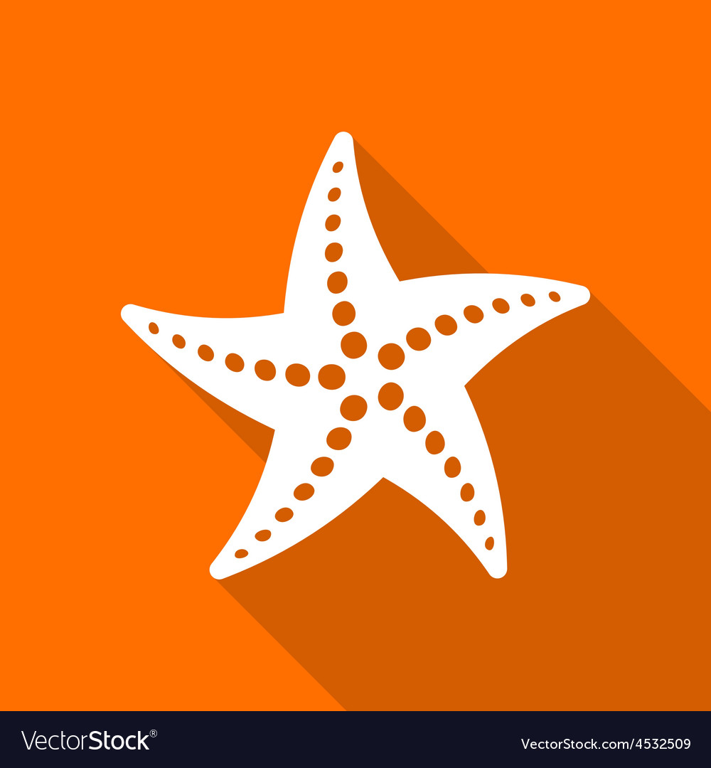 Starfish vector   Price: 1 Credit (USD $1)