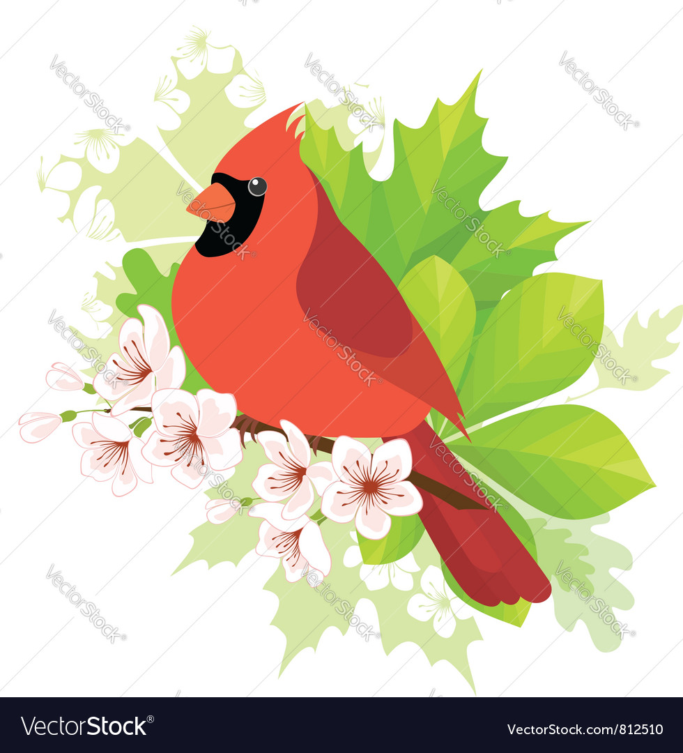 Spring cardinal vector | Price: 3 Credit (USD $3)