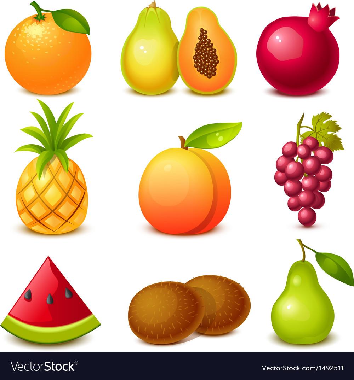 Fruit set vector | Price: 3 Credit (USD $3)