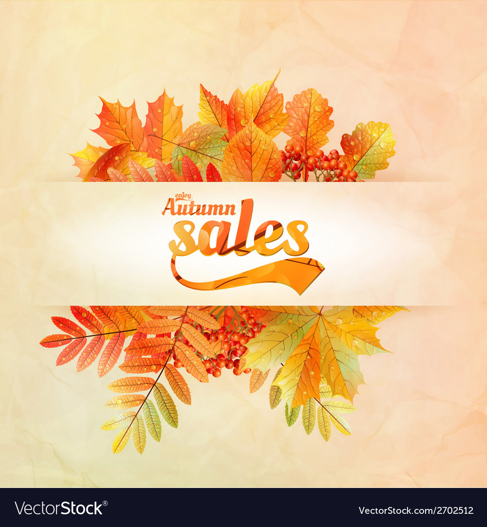 Autumn sale poster with leaves on a old paper vector | Price: 1 Credit (USD $1)