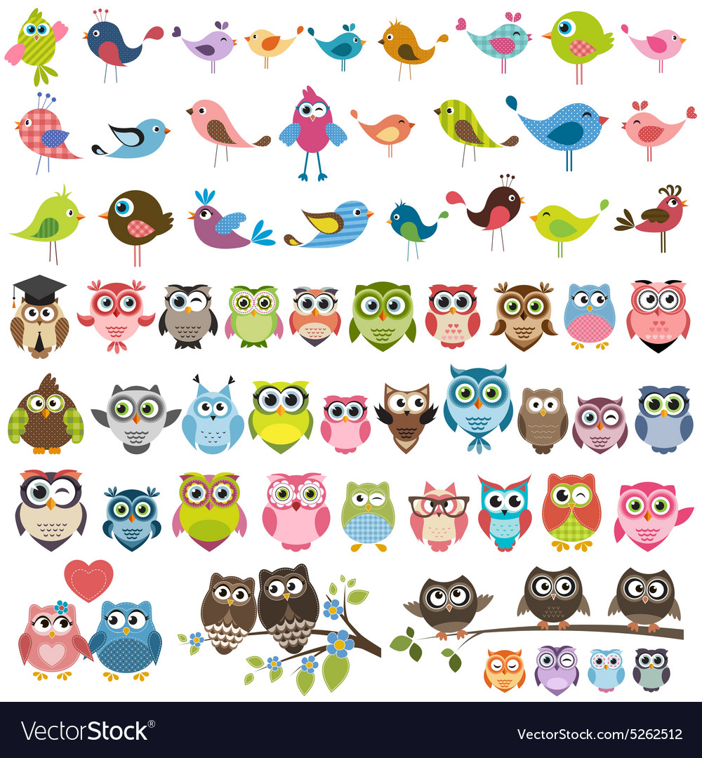 Set of cartoon colorful birds and owls vector