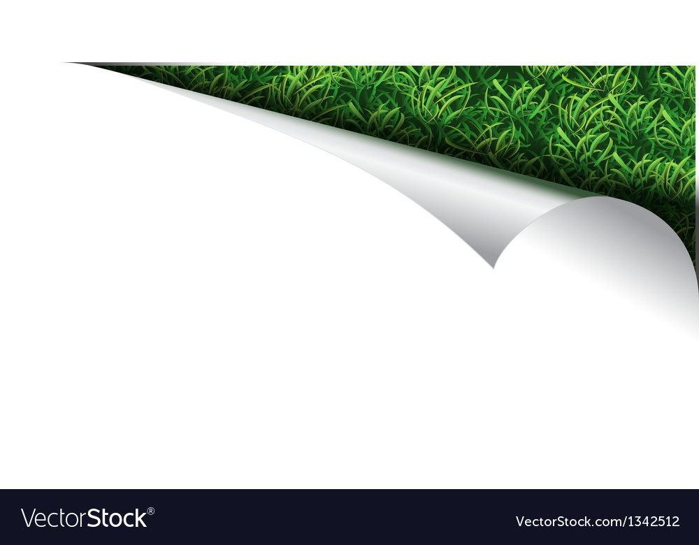 White paper page with grass in curl vector | Price: 1 Credit (USD $1)