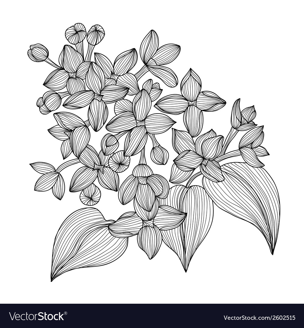 Decorative lilac vector | Price: 1 Credit (USD $1)