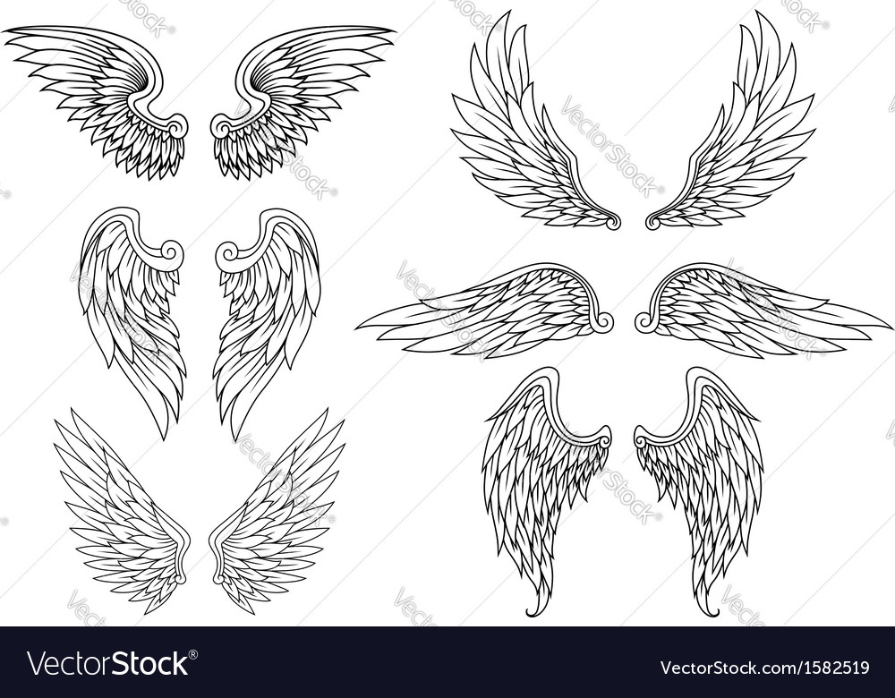 Heraldic wings set vector | Price: 1 Credit (USD $1)