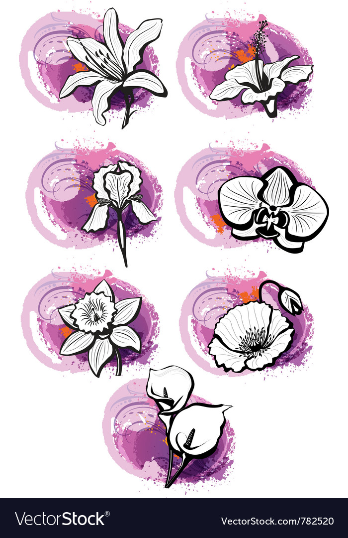 Stickers with heads of the flowers vector | Price: 1 Credit (USD $1)