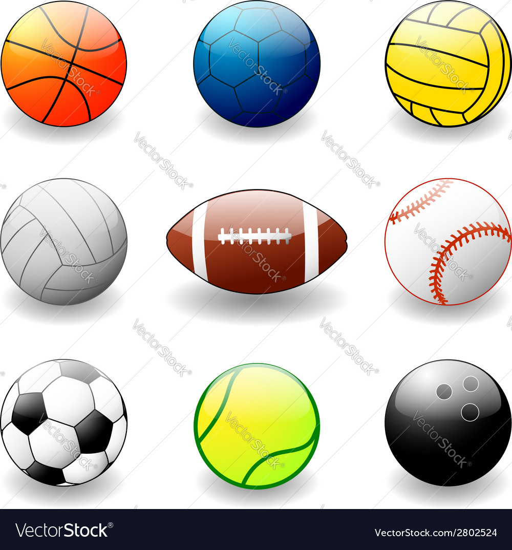 Sport equipement vector | Price: 1 Credit (USD $1)